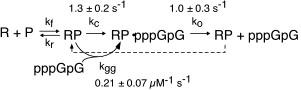 Kinetic equation
